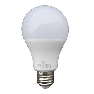 Ampoule à intensité variable 9W